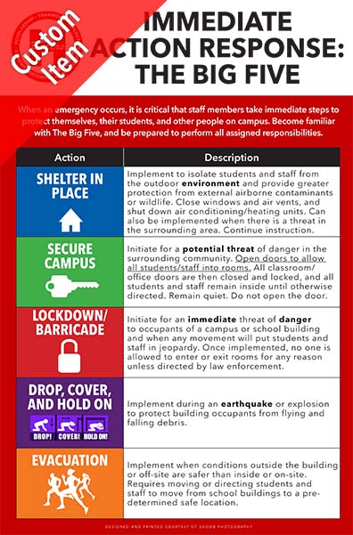 255 immediate action response big five poster 11x17.jpg