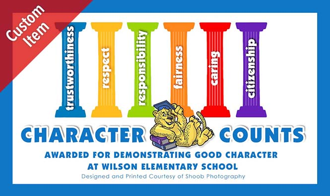 411c 5 pillars of character ticket.jpg