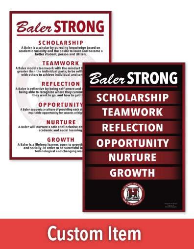 671 school vision and definitions poster set.jpg